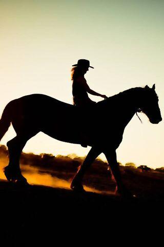 Cowgirl Horseback