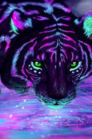 Reflection-Tiger