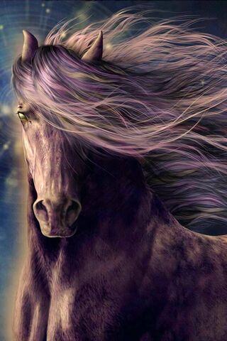 Starlight Stallion