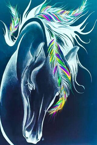 Kuda N Feather