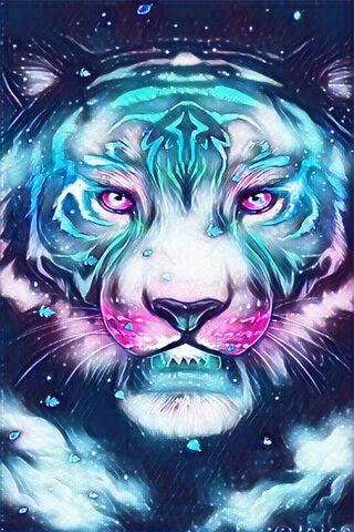 Tigregalaxy