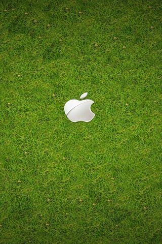 التفاح العشب