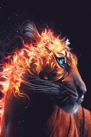Ogień Tygrys