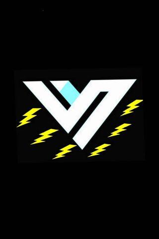 Logo Volticviper