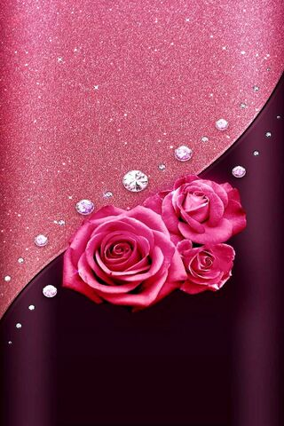 Edge Pink Rose