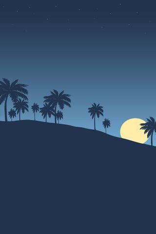 Palmtreesblue