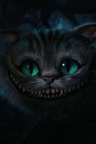 चेशिर बिल्ली