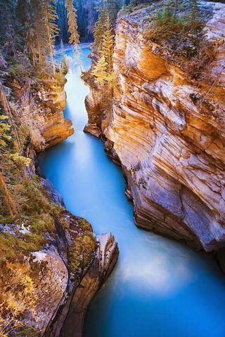 Schöne Aussicht in die Natur