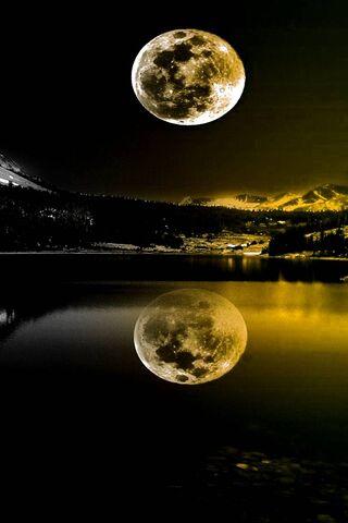 Yellow Moonlight