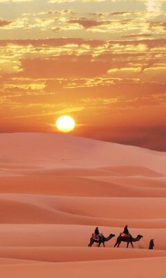Sahara Desert Wallpaper Download To Your Mobile From Phoneky