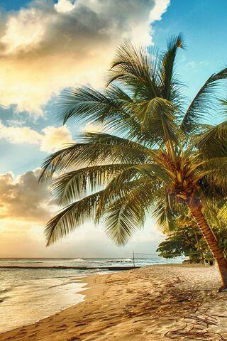 Playa brasileña