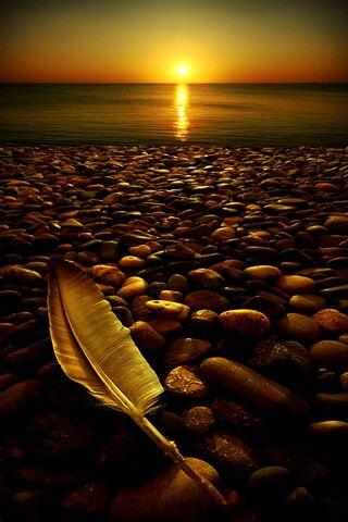 समुद्रकिनार्यावरील सूर्यास्त
