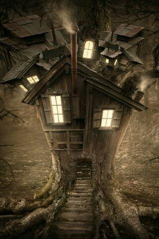 Albero Casa