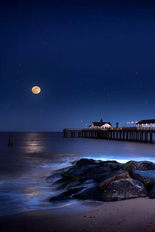 Beach Moonlight