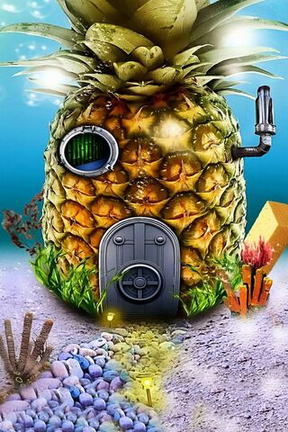 House Spongebob 2