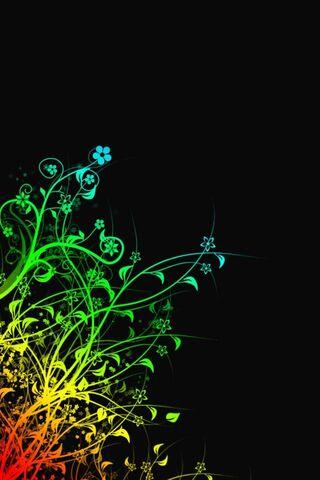 زهور قوس قزح
