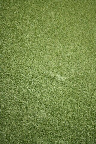Césped verde