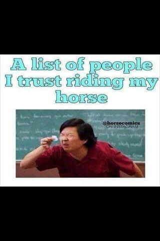 Menunggang Kuda Saya