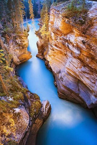 Nice Nature View