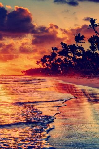 Sunset Beach View